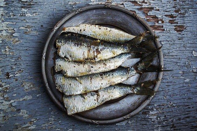 Ryby zawierające kwasy Omega3